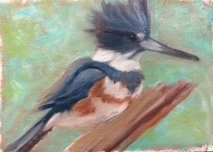 B is for Belted Kingfisher--in progress.