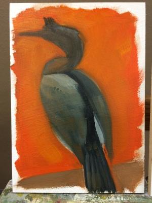 The beginning of my Cormorant.