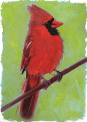 N is for Northern Cardinal