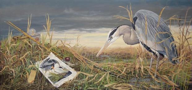 Fishing with Audubon's Great Blue Heron resized